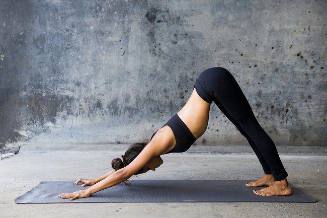 Йога комплексы для начального уровня онлайн