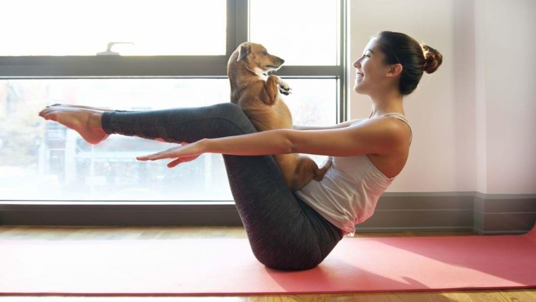 Йога не выходя из квартиры