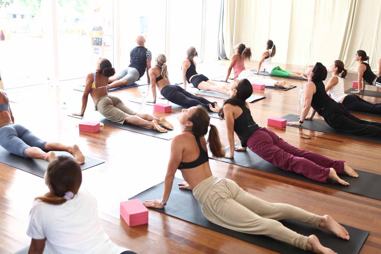 Йога для спины видео уроки