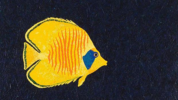Рыба Дхарма